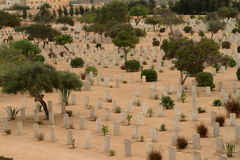 Commonwealth war cemetery at El Alamein Royalty Free Stock Photography