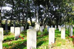 Commonwealth War Graves Nes, Ameland, Holland Royalty Free Stock Photo