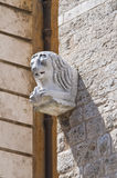 Communal palace. Narni. Umbria. Italy. Royalty Free Stock Photography