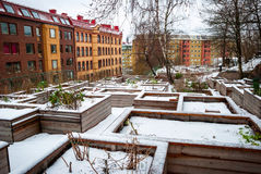 Communal vegetable gardens in Gothenburg in snow Royalty Free Stock Photos