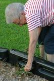 Communautaire Oma 3 van de Dienst Stock Afbeelding