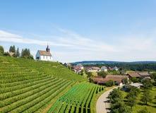 Commune Rheinau met wijngaard en Bergkirche St Nikolaus stock afbeeldingen