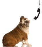 Communicatie van de telefoon concept Royalty-vrije Stock Afbeelding