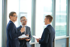 Communicating businessmen Royalty Free Stock Photography