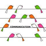Communication. Colorful birds on wires communicating Stock Image