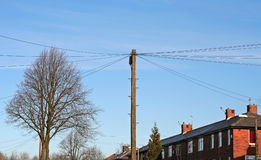 Communication. Telegraph poles carrying overhead cables to connect terraced houses to the telephone network Stock Photos