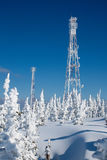 Communication antenn post with frost crystals Royalty Free Stock Images