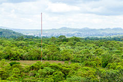 Communication Antenna In Amazon Forest Stock Image