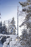 Communication antenna tower in snowy forrest Stock Photos