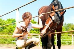 Communication de meilleurs amis L'adolescente avec le cheval et petits font Images stock