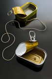 Communication - incommunication. Two cans (poorly suited). One cord. One of the most well-known metaphors for communication. Or incommunication Stock Image