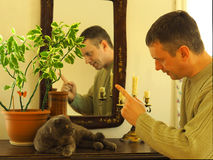 Communication with Pets. The man trainer teach the gray cat breed Scottish fold stock photos