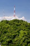 Communication Tower. In Forest area - Puerto Vallarta Mexico Stock Images
