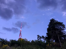 Communication tower in the forest royalty free stock photos