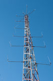 Communication tower in a forest Stock Image