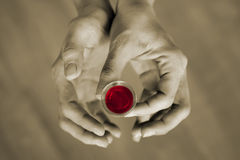 Communion. Hands holding a communion cup Royalty Free Stock Photography