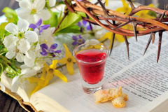Communion cup with wine and bread Stock Images