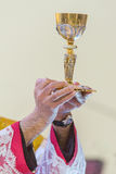 Communion Rite. Holy bread rite during the Catholic Mass Royalty Free Stock Photography