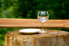 Communion Wine Glass Royalty Free Stock Photos