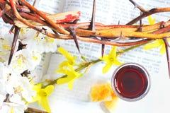 communion zabranie Fotografia Royalty Free