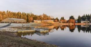 Community湖(有花边, WA) 库存图片