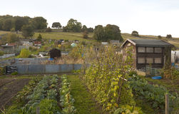 Community Allotments Royalty Free Stock Photography