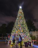 Community Christmas tree at night in Houston, Texas, USA Royalty Free Stock Images