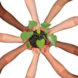 Community Collaboration. And cooperation concept and social crowdfunding investment symbol as a group of diverse hands organized in a circular formation Royalty Free Stock Photography