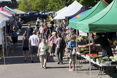 Free Community Farmers Market Stock Photo - 73295190