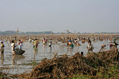 Community Fishing. People gathered in large number for fishing on a pre-fixed date by the social commitee on an area of Chaygaon, 40 Km west from Guwahati, Assam stock photo
