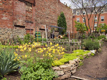 Community garden. A community garden in the middle of a city Stock Photo