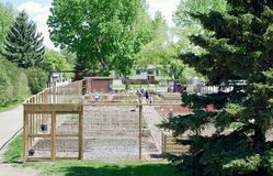 Community Outdoor Garden, Alberta, Canada. Community neighborhood garden for apartment dwellers at first planting royalty free stock photography