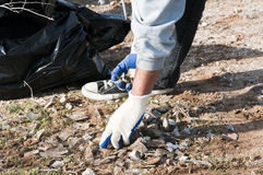Community park cleanup. Volunteers clean up trash in a park and on trails Royalty Free Stock Photos