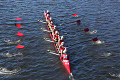 Community Rowing Head of Charles Regatta Stock Photography