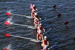 Community Rowing races in the Head of Charles Royalty Free Stock Photos