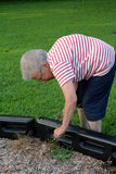 Community Service Grandma 2. Senior citizen woman clearing weeds in a public playground royalty free stock images