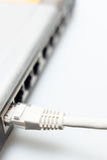 Commutateur de pivot de réseau avec le câble LAN connecté Images libres de droits