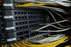 Commutateur de réseau et câbles d'Ethernet Photographie stock libre de droits