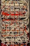 Commutatore e cavi - rete Fotografie Stock Libere da Diritti