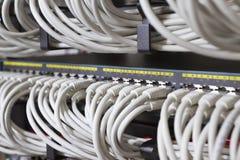 Commutatori di rete Immagine Stock Libera da Diritti