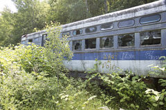 Commuter train compartment in weeds Stock Photos