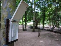 Commutez au milieu des bois Photo libre de droits