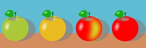Como amadurece a maçã Fotografia de Stock