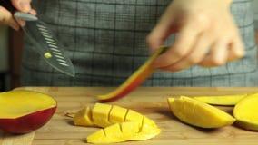 Como cortar uma manga para o bolo do crepe do oreo vídeos de arquivo