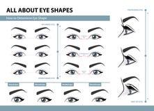 Como determinar a forma do olho Vários tipos de olhos fêmeas Grupo de ilustrações do vetor com subtítulos Molde para a composição ilustração do vetor