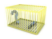 Como encontrar a resposta Exclamação e pontos de interrogação na gaiola do ouro Fotografia de Stock