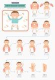 Como fazer massagens seu bebê infographic ilustração royalty free