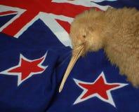 Como kiwi como imagenes de archivo
