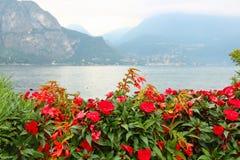 Como lake, Italy Royalty Free Stock Image