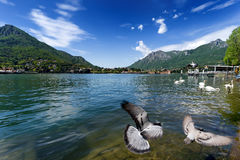 Como lake from Lecco, Italy. Royalty Free Stock Photography